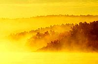 Fog along the Vermillion River at sunrise, Whitefish, Ontario, Canada
