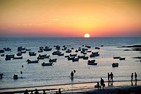 People on the beach at sunset, Cadiz, Andalusia, Spain, Europe
