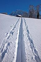 Switzerland, Europe, mountain, mountains, winter, canton, SZ, Schwyz, central Switzerland, tracks, traces, snow, myths, Mythen,