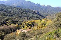 Mediterranean landscape.