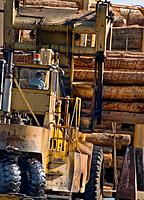Massive log loader machine removing logs from big rig truck, to be loaded onto log ship for transport to China; Port of Port Angeles, Washington USA.