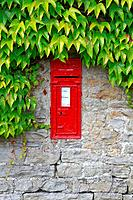 VR Victorian wall post box in ivy covered stone wall, Thwaite, Yorkshire Dales, England, UK.