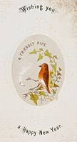 A robin smokes a clay pipe - a very early Christmas card