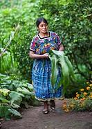 Guatemala, Comalapa< Mayan woman with corn leaves.