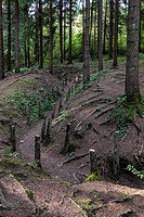 Preserved First World War One London communication trench / tranchée de Londres in forest near Douaumont, Lorraine, Battle of Verdun, France
