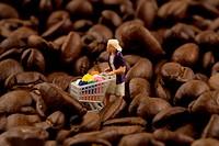 coffee beans . - 03/09/2008