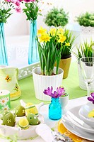 Place setting for Easter with daffodil and fresh green grass