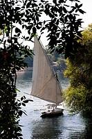 Felucca sailing in the Nile - Aswan, Upper Egypt.