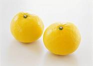 Oranges from Miyazaki