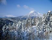 Akan Fuji and forest in winter, Hokkaido, Japan