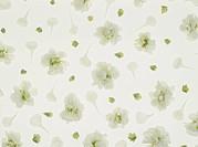 Design made with flower petals