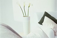 White vase with three white calyxes, pillows in the foreground