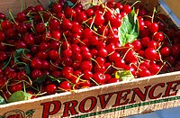 Provence - Europe - France - PACA - Cherries harvested in crate.