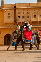 Tourists ride elephants up to the Amber Fort, Jaipur, Rajasthan, India.