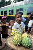 annona vendor in a station of the railway from Fianarantsoa to Manakara, Madagascar, Indian Ocean, Southeast Africa.