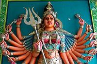 Sculptures in the Sri Srinivasa Perumal Temple in Singapore.
