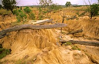 Land degradation, severe gully erosion due to tree clearing, Taroom District, central Queensland, Australia
