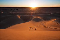 Sahara desert sand dunes, Erg Lihoudi, M´Hamid, Draa Valley, Morocco.