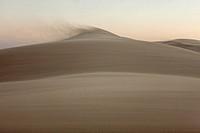Windy Desert landscape