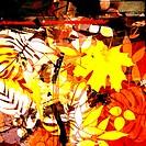 art grunge floral background card