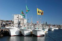 Fishing boat, big catch flag, Choshi, Chiba, Kanto, Japan