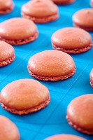 Blanks for the macaroons close up.