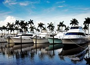 Luxury boats at a marina in Florida.