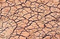 Cracked dry soil in desert background