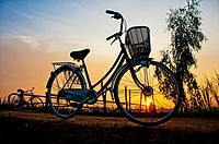 Bicycles in sunrise
