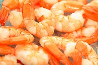 fresh king prawns on some ice ready to eat