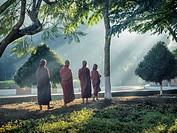 Myanmar Monks.