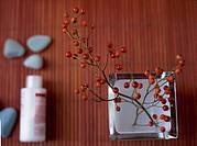Twig and Berries in Vase
