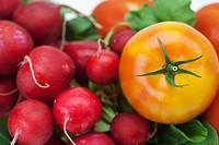 radish, cucumber and tomato isolated on white