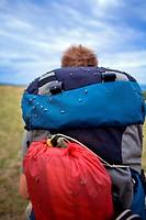 Flies Covering Backpack