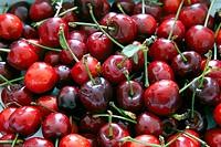 Sweet Cherries.