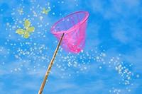 Pink butterfly net and magic yellow butterflies over blue sky