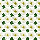 Seamless pattern of flowers and lea