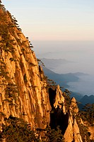 Morning atmosphere, fog, bizarre towering rocks and mountains covered with scattered trees, Huangshan Pines (Pinus hwangshanensis), Huang Shan, Mount ...