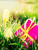 Pink gift box with yellow easter e