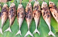 grilled torpedo scad ( Finny scad ) fish - Thai food