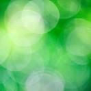 Nature green bokeh