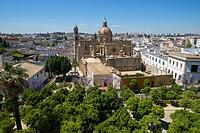 Andalusia, Spain, Europe, outside, day, Jerez de la Frontera, Costa de la Luz, nobody, town view, town, city, cathedral, church, building, constructio...