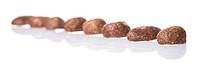 Crunchy Chocolate Breakfast Cereal