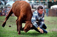 Australian Cowboys at the annual Lang Lang Rodeo. Victoria, Australia.
