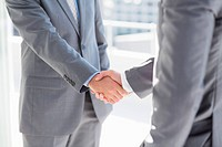 Business colleagues greeting each other