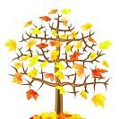Lonely maple autumn tree