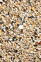 Texture colored sea rocks