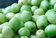 monkey apple, green fruit in Thailand