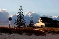 Beach at Whangamata