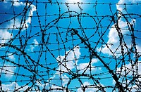 Barbed wire and freedom